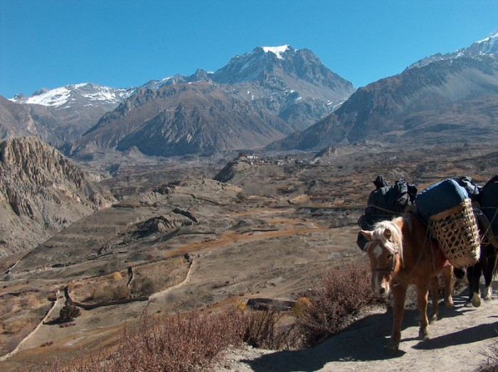 Beauty of Nepal - Trekking in Nepal
